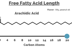Free Fatty Acids