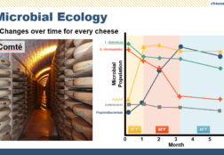 Science of Farmstead Cheese