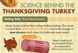 Turkey Science Infographic