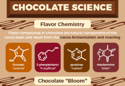 Chocolate Science